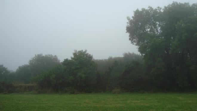 mists2